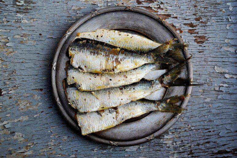 grilled sardines on metal plate painted wood background